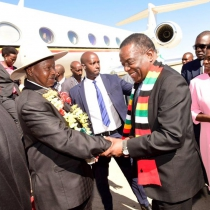 President Yoweri Museveni being welcomed by his Zimbabwean counterpart. PPU photo