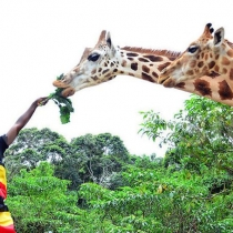 Uganda will take part in the 8th edition of the Magical Kenya Travel Expo (MKTE)